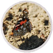 Painted Lady 8591 3341 Round Beach Towel