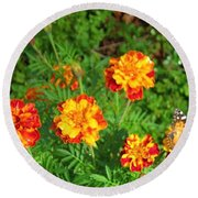 Painted Lady Butterfly In The Marigolds  Round Beach Towel