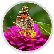Painted Lady With Zinnia Round Beach Towel
