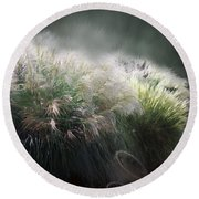Painted Pampas Round Beach Towel