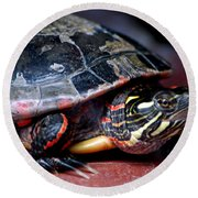 Painted Turtle Michigan Round Beach Towel