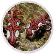 Pair Of Miamira Magnifica Nudibranch Round Beach Towel