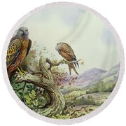 Pair Of Red Kites In An Oak Tree Round Beach Towel by Carl Donner