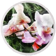 Pale Pink Phalaenopsis Orchids Round Beach Towel
