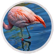 Palm Springs Flamingo Round Beach Towel