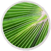 Palm Tree Frond Round Beach Towel