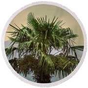 Palm Tree Round Beach Towel