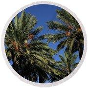 Palms 9838b Round Beach Towel