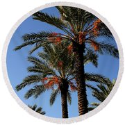 Palms9895b Round Beach Towel