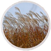 Pampas Grass In The Wind 1 Round Beach Towel