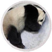 Panda Paws Round Beach Towel