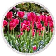 Panel Of Pink Tulips Round Beach Towel