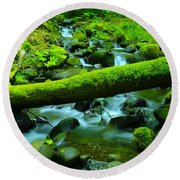 Paradise Of Mossy Logs And Slow Water   Round Beach Towel