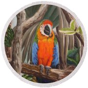 Parrot At New Orleans Zoo Round Beach Towel