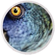 Parrot, Close Up Round Beach Towel