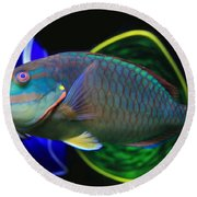 Parrot Fish With Glass Art Round Beach Towel