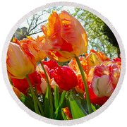 Parrot Tulips In Philadelphia Round Beach Towel by Mother Nature