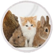 Partridge Pekin Bantam With Kitten Round Beach Towel