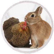 Partridge Pekin Bantam With Rabbit Round Beach Towel