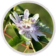 Passion Flower - May Pop Bloom Round Beach Towel