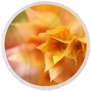 Passion For Flowers. Orange Delight Round Beach Towel