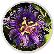Passionflower Round Beach Towel by David Lee Thompson
