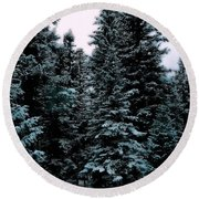 Pat's Winter Trees 1d Round Beach Towel