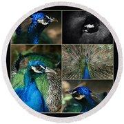 Pavo Cristatus IIi The Heart Of Solitude  - Indian Blue Peacock  Round Beach Towel