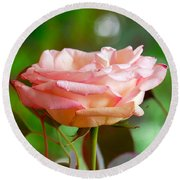 Peace Rose Round Beach Towel
