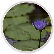 Peaceful Waterlily Round Beach Towel