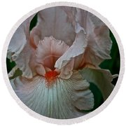 Peach Iris Round Beach Towel