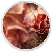 Peach Roses And Ribbons Round Beach Towel by Svetlana Sewell