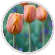 Peach Tulips  Square Format Round Beach Towel