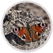 Peacock Butterfly Round Beach Towel