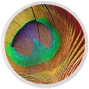 Peacock Feather 2 Round Beach Towel