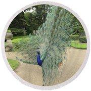 Peacock Glory Round Beach Towel