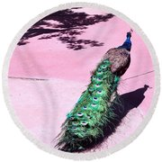 Peacock Walk Round Beach Towel