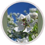 Pear In Bloom Round Beach Towel