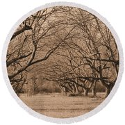 Pecan Orchard Round Beach Towel