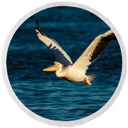 Pelican Brief Round Beach Towel