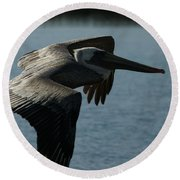 Pelican Fly By Round Beach Towel