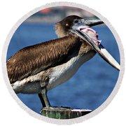 Pelican I Round Beach Towel