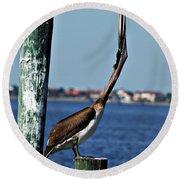 Pelican IIi Round Beach Towel