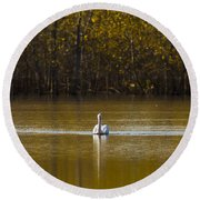 Pelican On Golden Pond Round Beach Towel