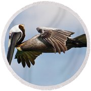 Pelican Prepares To Dive Round Beach Towel