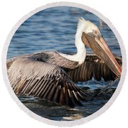 Pelican Take Off Round Beach Towel