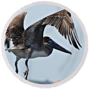 Pelican V Round Beach Towel