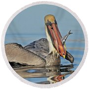 Pelican With Catch Round Beach Towel