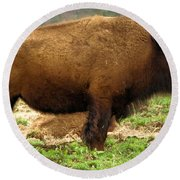 Pennsylvania Bison Round Beach Towel