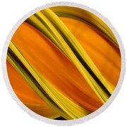 Peripheral Streak Image Of Squash Round Beach Towel